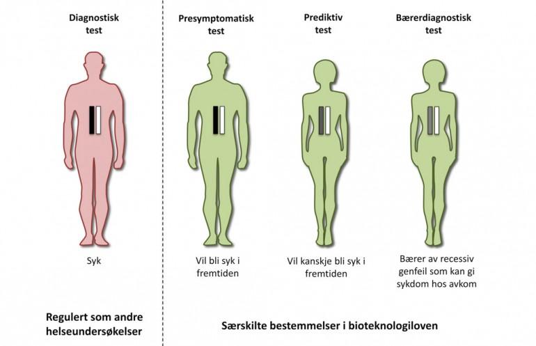 Figur som viser ulike typer gentester