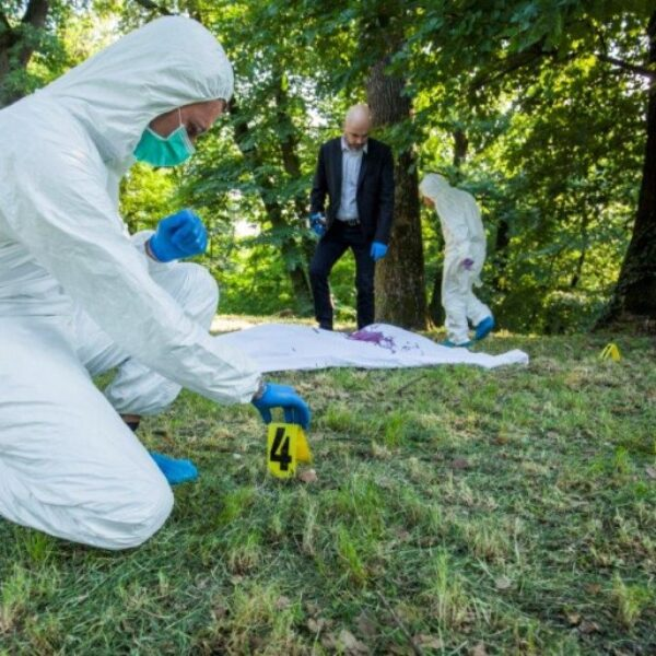 DNA-analyser i etterforskning og rettsvesen