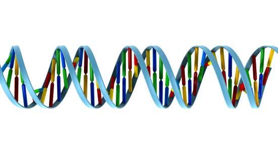 Tegning av DNA-molekyl