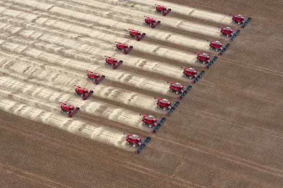 Landbruksmaskiner høster soya på en åker i Brasil