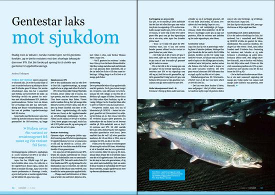 Faksimile av artikkelen i GENialt 3-2012