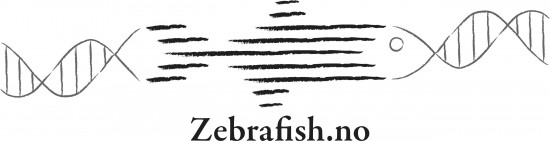 Logo med teksten Zebrafish.no