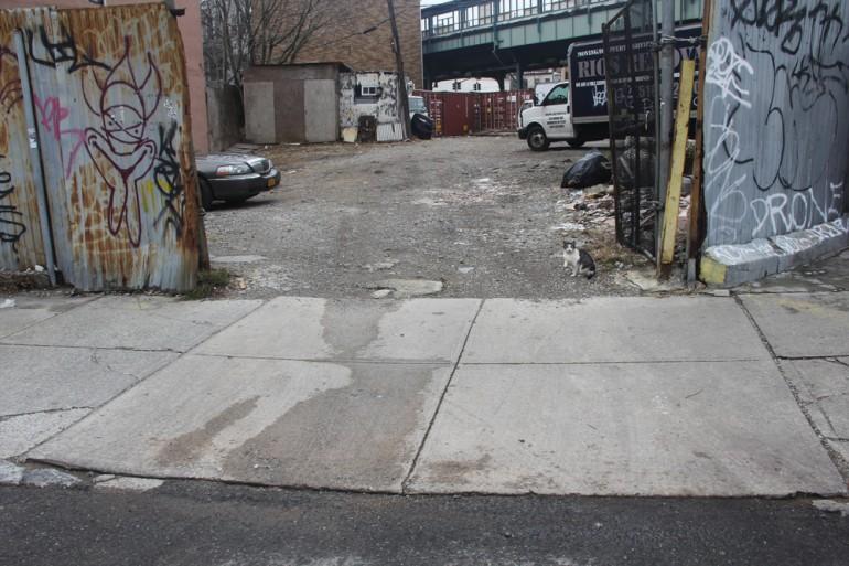 Myrtle Avenue, Brooklyn, New York. 6. januar, 2013 kl. 12:15. Her plukket kunstneren opp en sigarettsneip som senere ble analysert. Foto: Heather Dewey-Hagborg