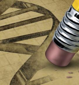 DNA blyant viskelær