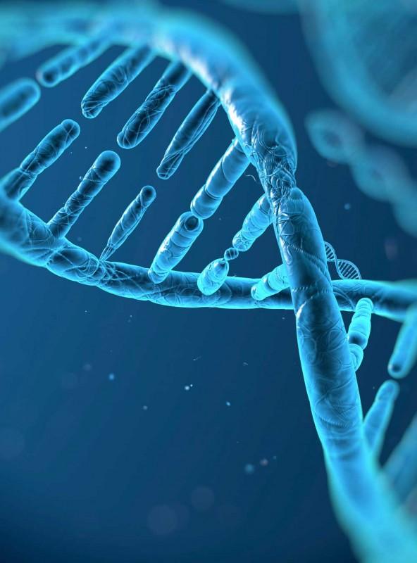 DNA-heliks