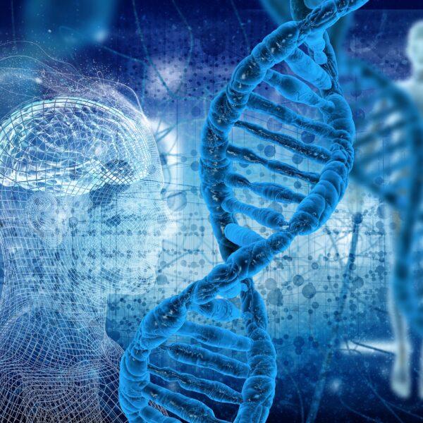 Genteknologi på naturfagrommet