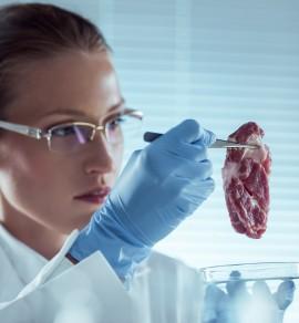 forsker med kjøtt i lab