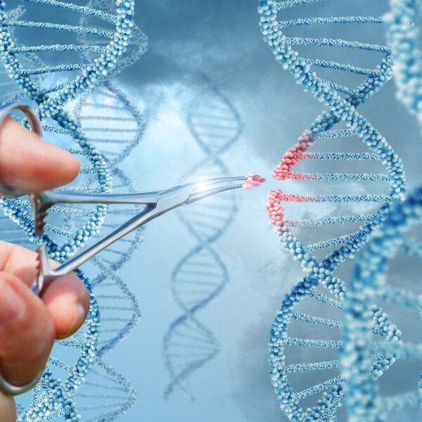 Genredigering/CRISPR
