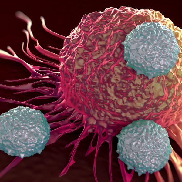 Arvelig kreft og norske genvarianter