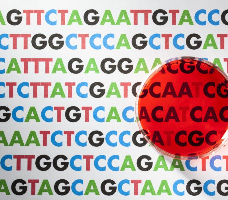 Alle data i verda i 20 gram DNA