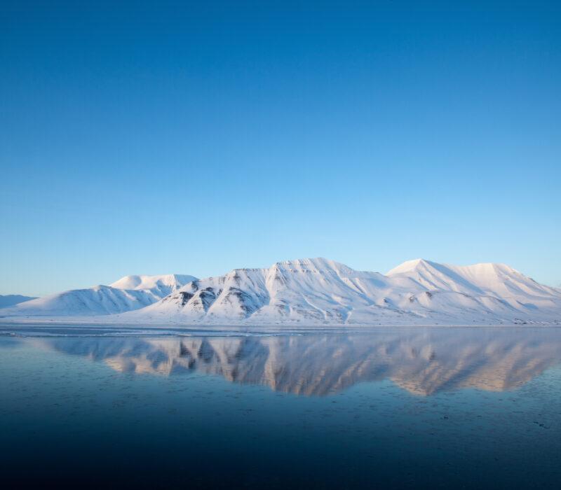 I GENialt: Miljø-DNA: Tar pulsen på naturen