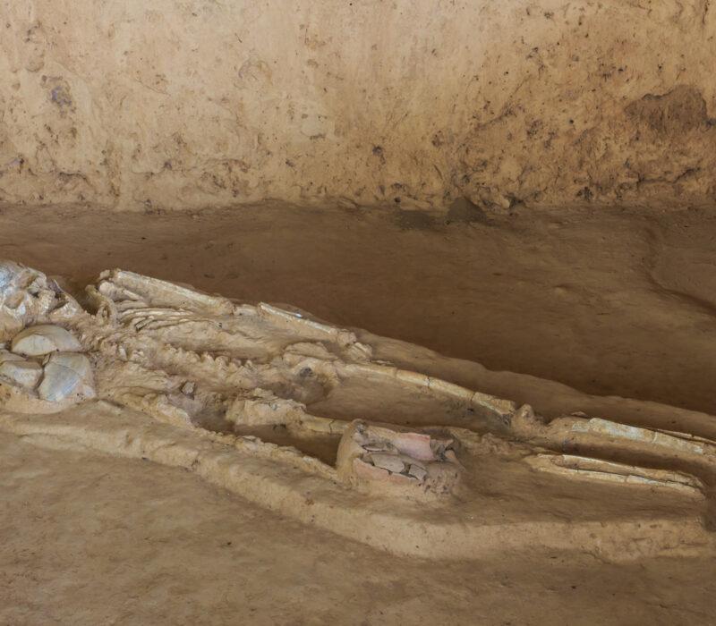 I GENialt: DNA avslører hemmeligheter fra  menneskets tidlige historie