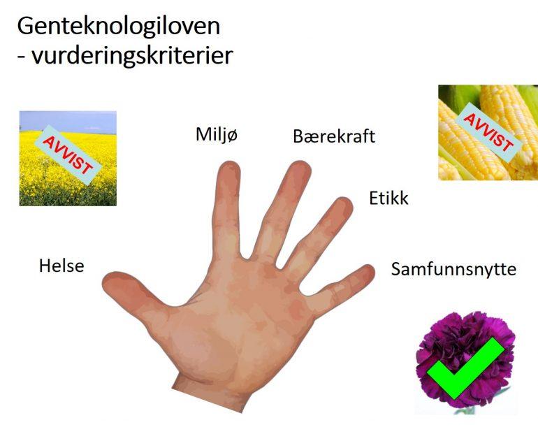 De fem vurderingskriteriene i genteknologiloven er Helse, miljø, bærekraft, etikk og samfunnsnytte