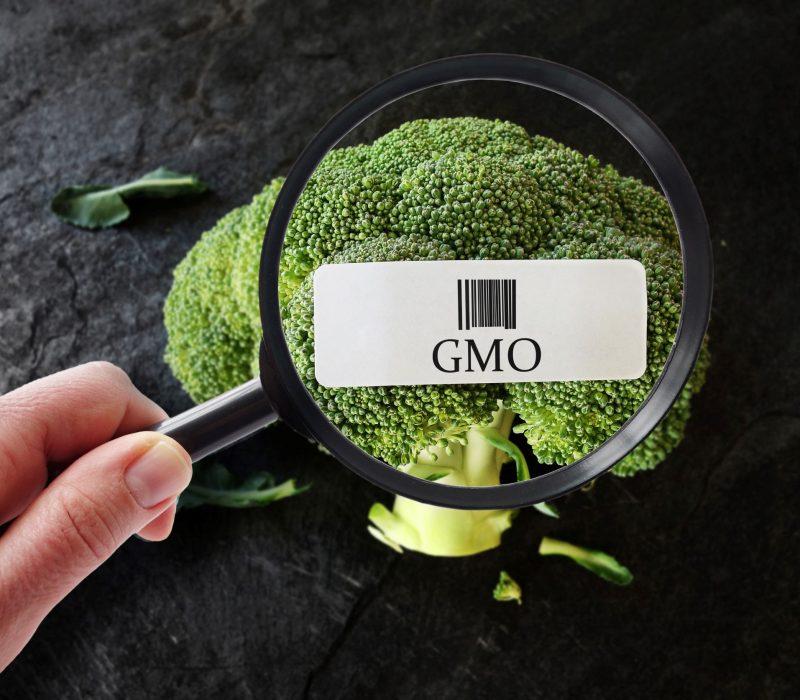 Arendalsuka 18.8: Genredigering og global matproduksjon